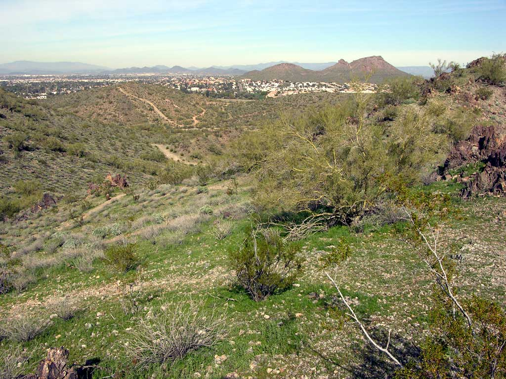Another view of Phoenix from one of the peaks of the Phoenix Mountains Preserve