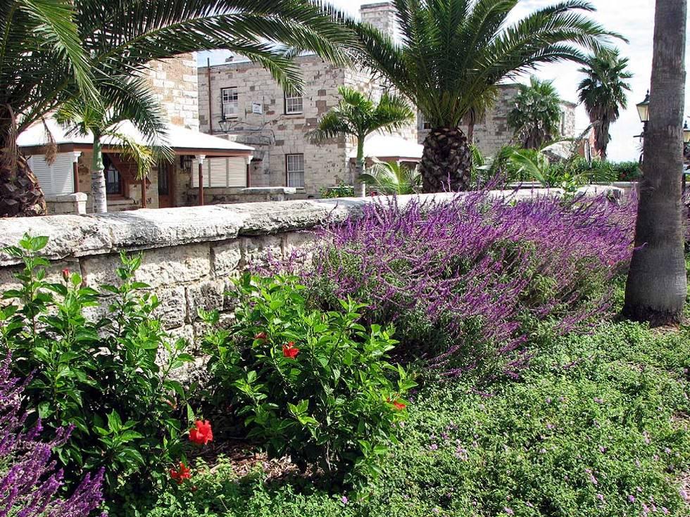Bermuda Bermuda Maritime Museum flora