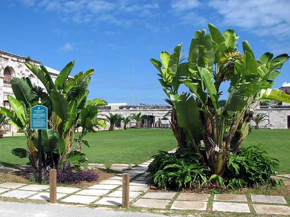 Bermuda Bermuda Maritime Museum Victualling Yard
