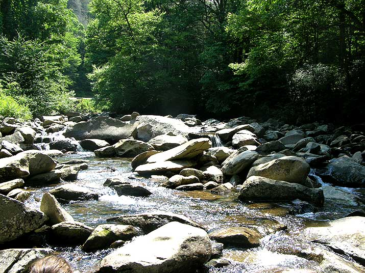 Great Smoky Mountains National Park Little Pigeon River